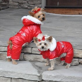 Red Ruffin It Dog Snow Suit size Large