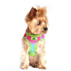 """Patented """"Ombre""""  Choke Free Harnesses size Xlarge"""